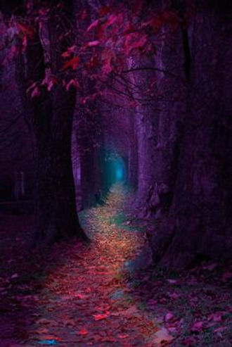Follow your true path