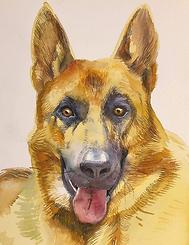 THOMAS-J-CARLSON-DOG.PNG