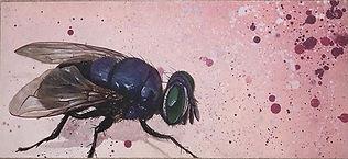 evan-lovett-fly.JPG