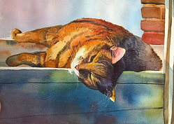 THOMAS-J-CARLSON-CAT.PNG