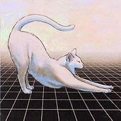 alexis-kandra-4x-Infinite-Cat.jpg