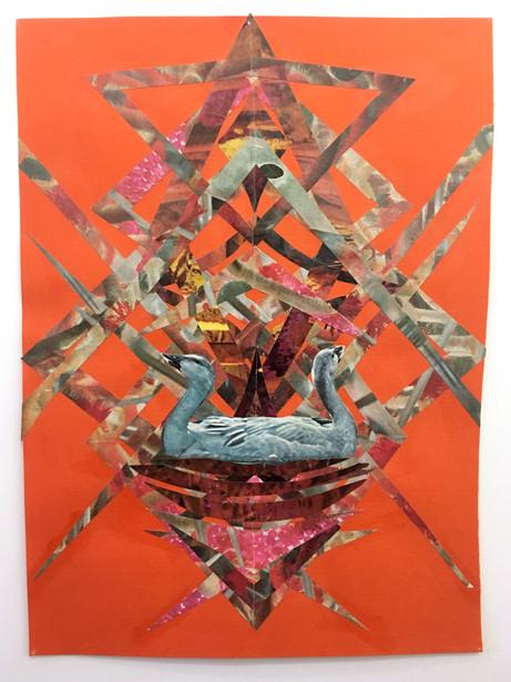 kilroy-collage-swans.JPG