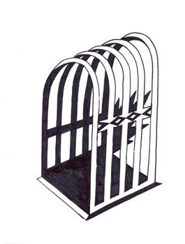 cage fig.4