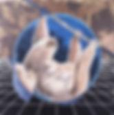 alexis-kandra-mothership-1-2.jpg