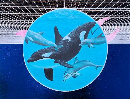 alexis-kandra-8x-Cetacea.jpg