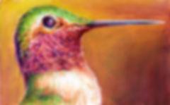 Hummingbird_Green_2019_Cropped___.jpg
