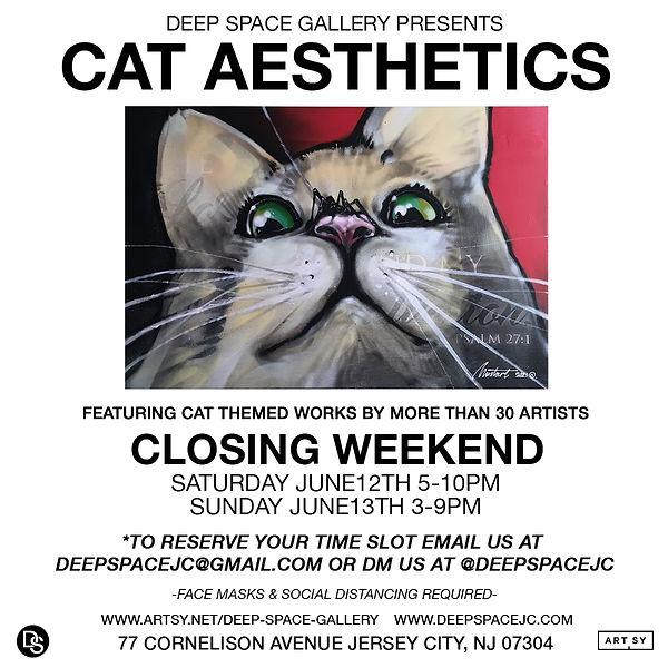CAT-AESTHETICS-CLOSING.jpg