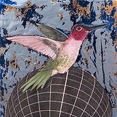 alexis-kandra-4x-Hummingbird.jpg