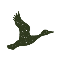 JL SECONDARY duck icon green 3.png