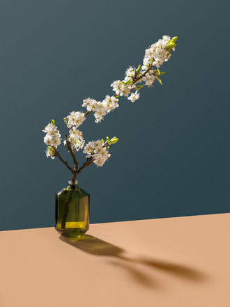 Giles Angel - Digital Artist, CGI, Motion & Retouching