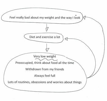 Formulation for Anorexia Nervosa