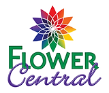 flowercentral-logo_1.webp