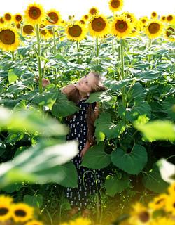 Haley Miller sunflower field 4