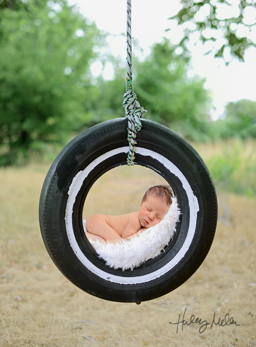 digital backdrop hanging tire swing baby in web