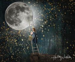 wesley climbing to moon web