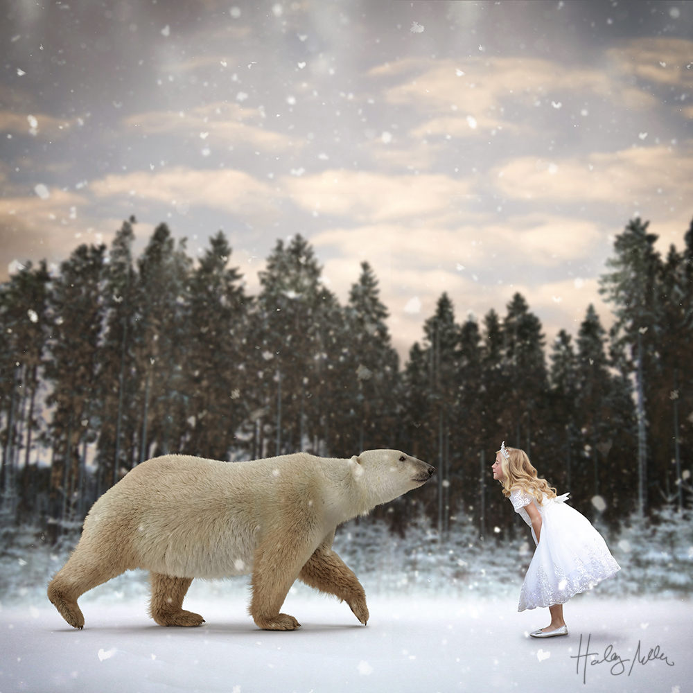 winter polar bear digital backdrop char in crop web