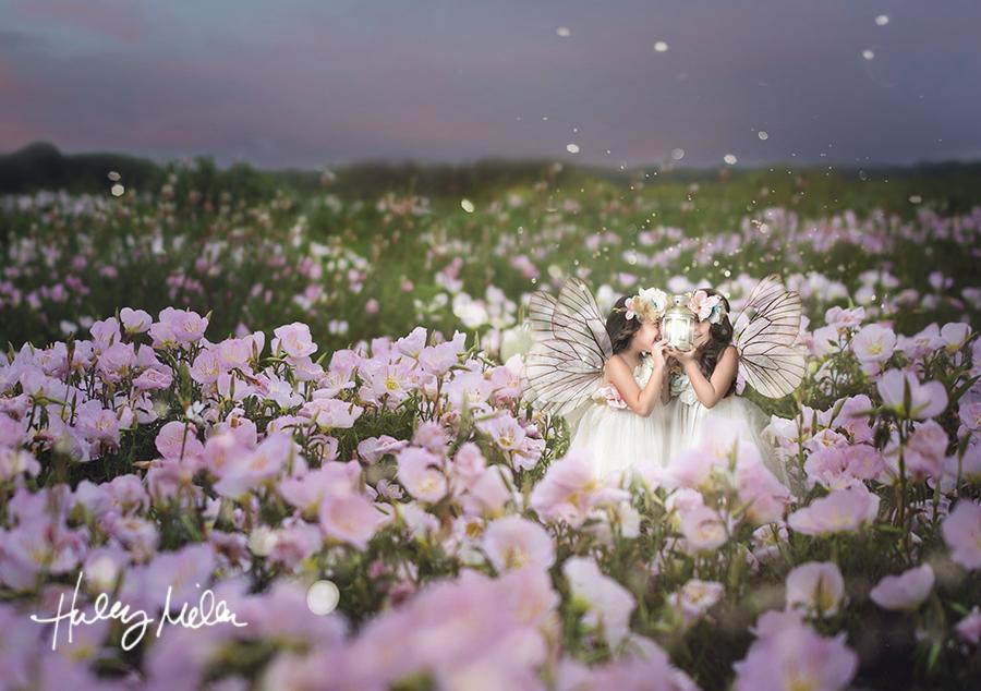 landl 2 fairy fb