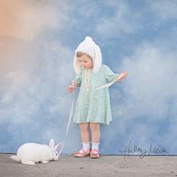cedar bunny web IG