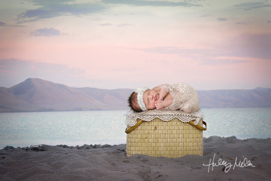 newborn digital backdrop girl beach lake basket baby in web