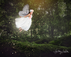 LandL fairy fb