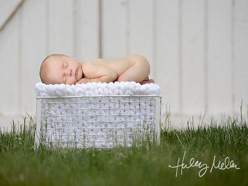 newborn baby digital backdrop white barn green grass