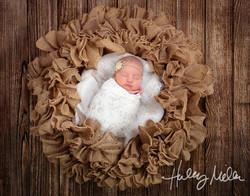 lia burlap wreath web