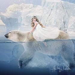 lyla polar bear a ig web