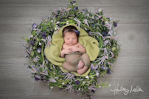 On Sale! Newborn Girl Digital Backdrop Background Purple Wreath