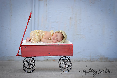 Newborn Girl/Boy Digital Backdrop Background Simple Rustic Red Wagon Prop