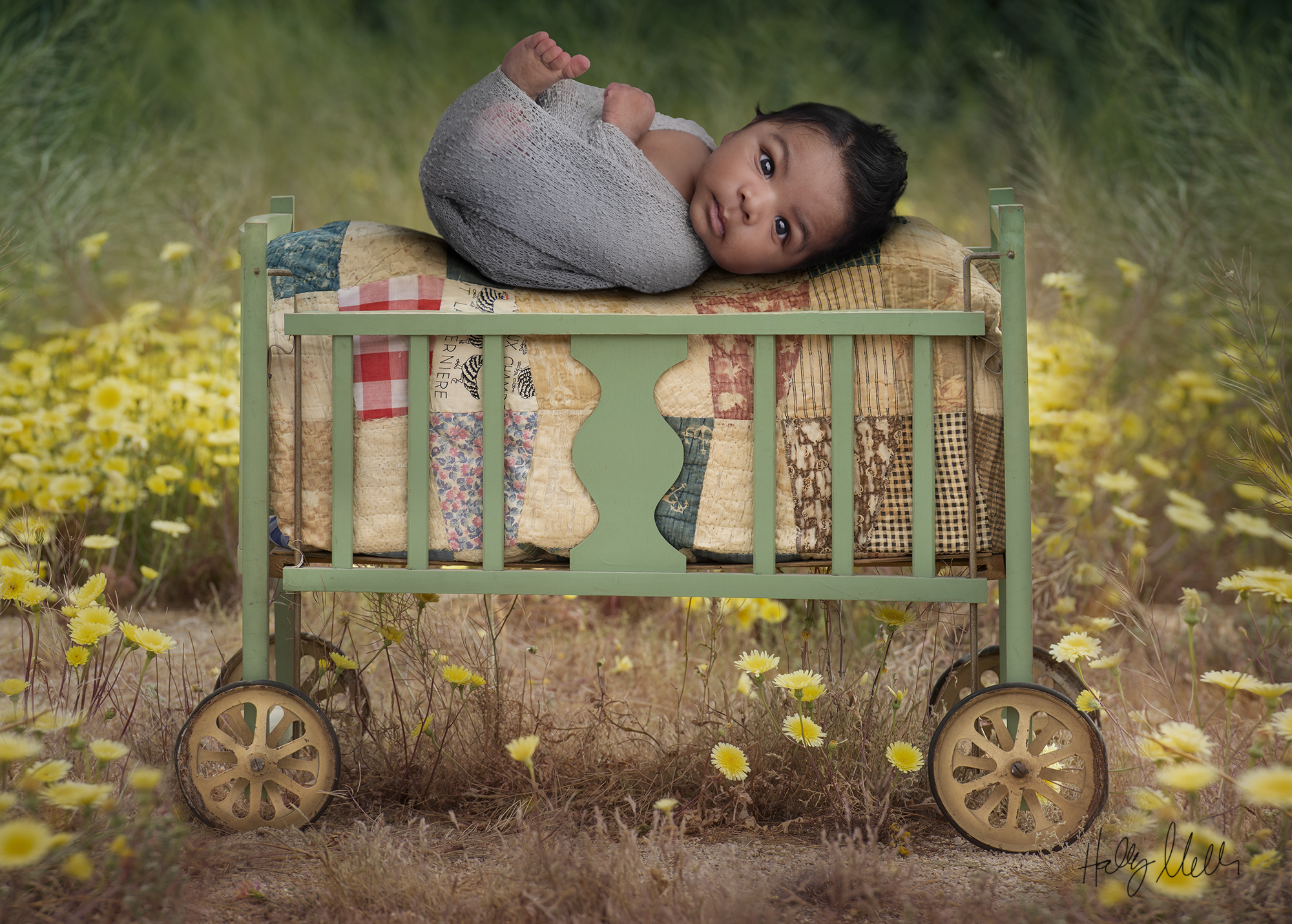 vintage crib in field baby in web