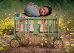 vintage crib in field baby in web