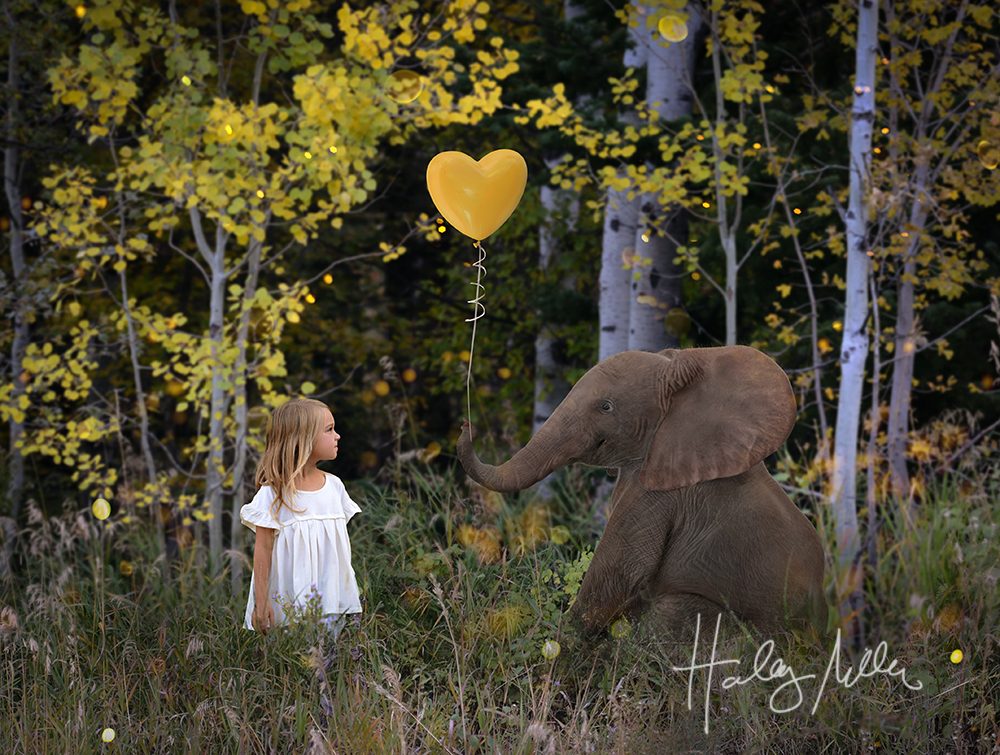 fall elephant digital backdrop 2 child in web