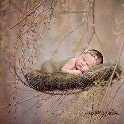 mattie nest ig web