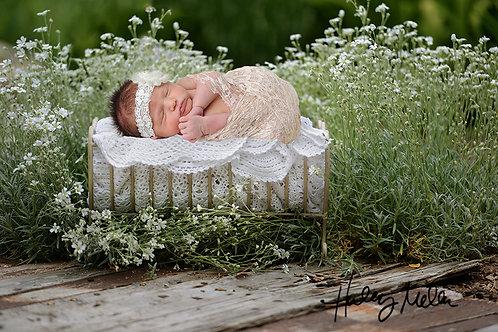 newborn white daisy outdoor bed digital background