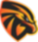 Eagles Basketball Academy Logo.png