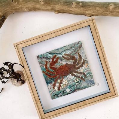crab%20and%20shells_edited.jpg