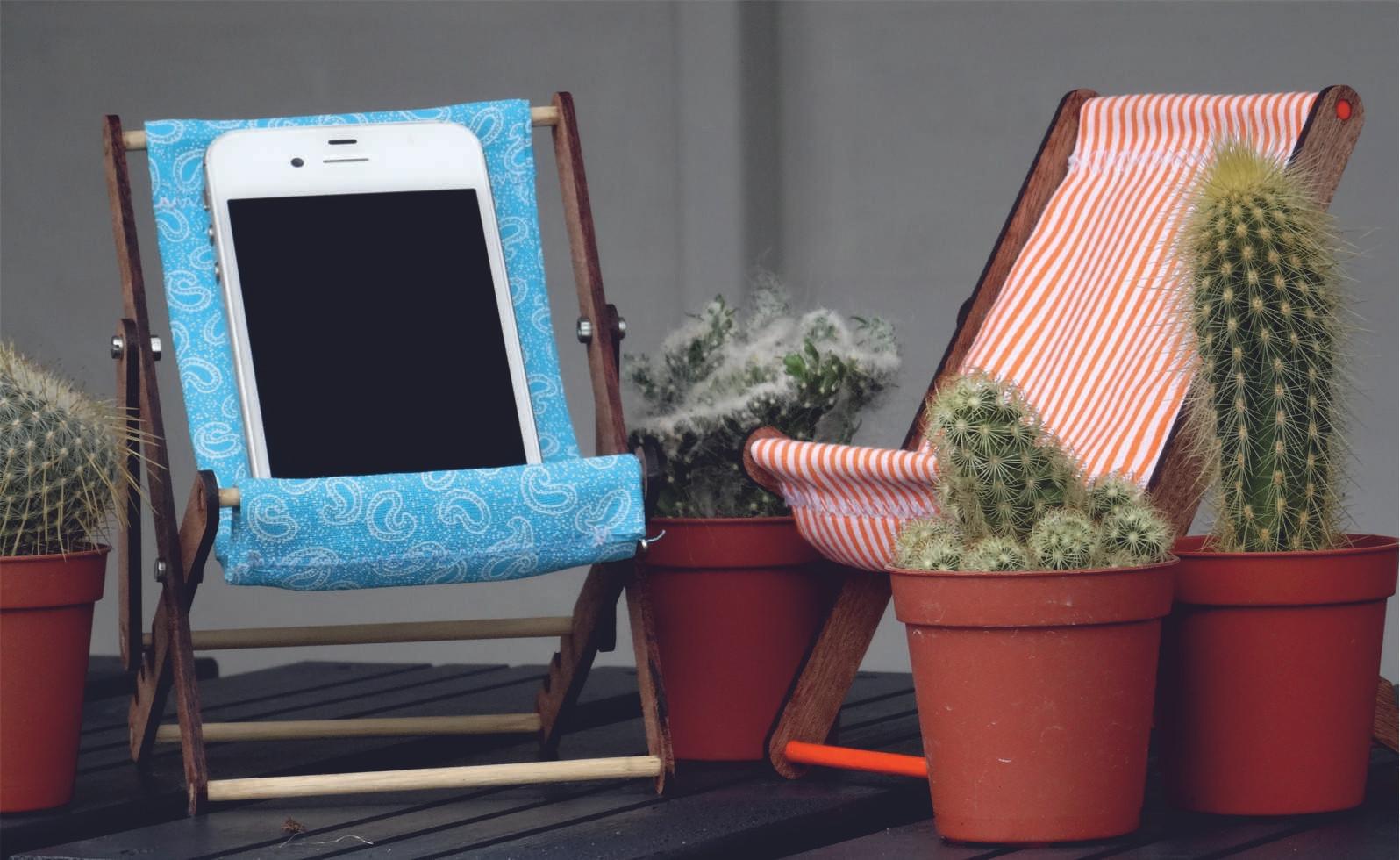cacti & 2 chairs.jpg
