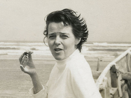 LETTRE A CHARLOTTE PERRIAND