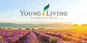 young-living-mlm.png