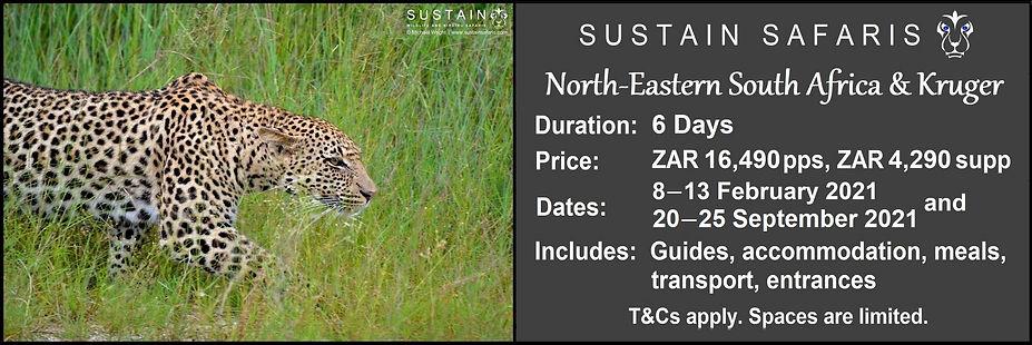 Sustain NE SA & Kruger 6D Tour Ad1.jpg