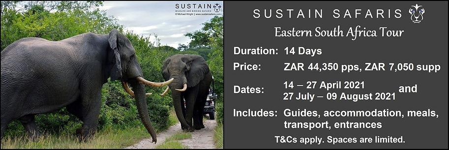 Sustain E SA 14D Tour Ad.jpg