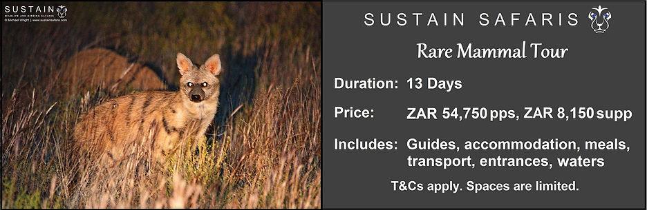 Sustain Rare Mammal 13D Tour Ad.jpg