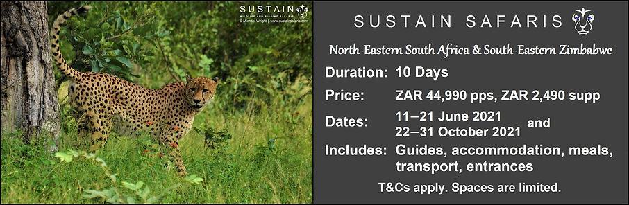 Sustain Ex NE SA & SE Zim 10D Tour Ad.jp