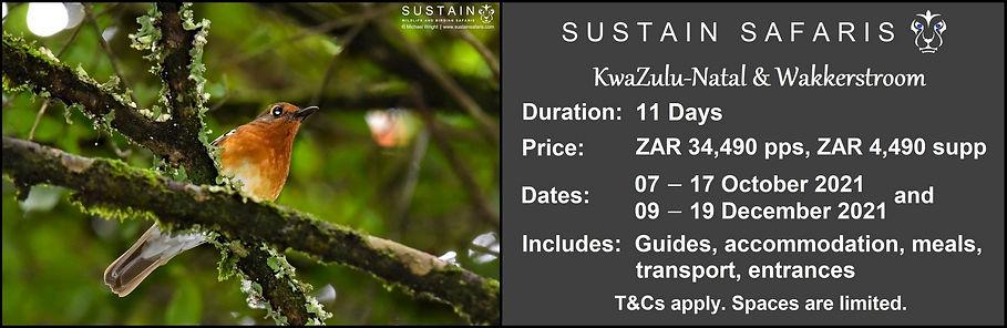 Sustain KZN & Wakk 11D Tour Ad.jpg