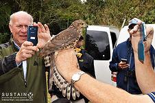 Bird ringing signed (2).jpg