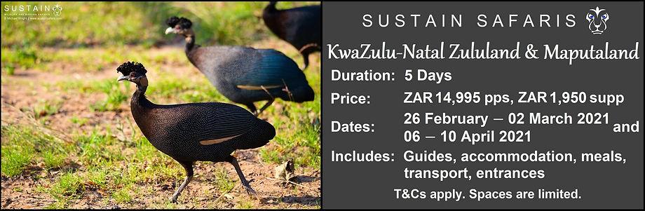 Sustain KZN ZM 5D Tour Ad5.jpg