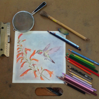 Hummingbird - A work in Progress