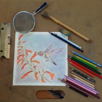 Hummingbird - A work in Progress