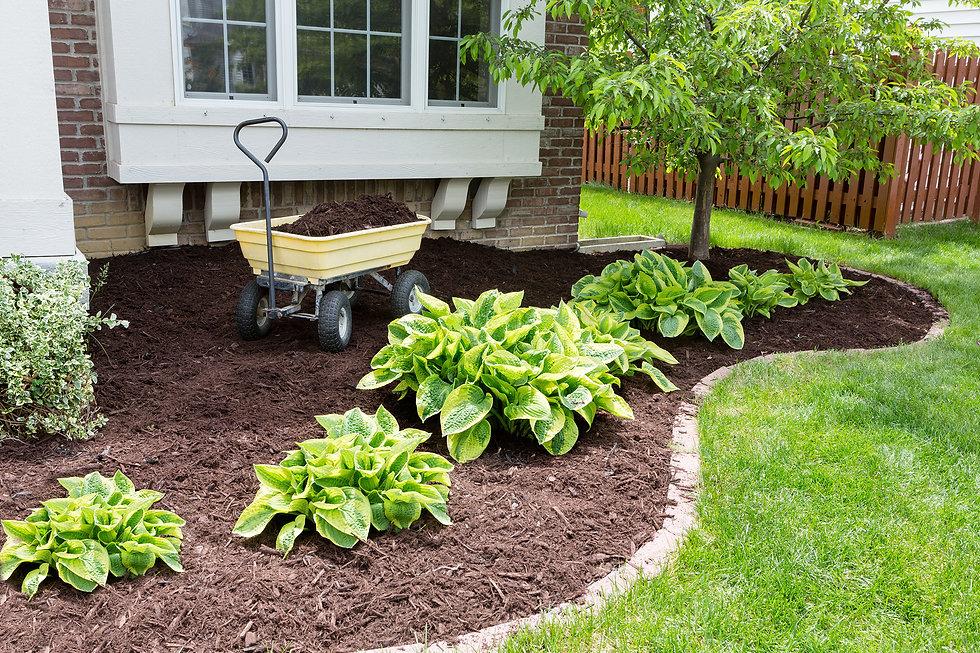 Landscaping Garden 2200.jpg