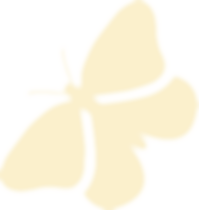 Logo Butterfly Cream Light.png